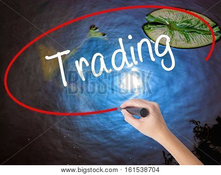 Woman Hand Writing Trading  With Marker Over Transparent Board