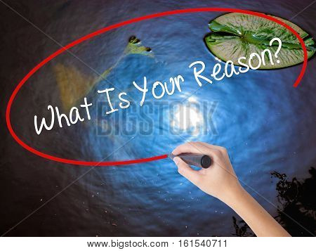 Woman Hand Writing What Is Your Reason? With Marker Over Transparent Board