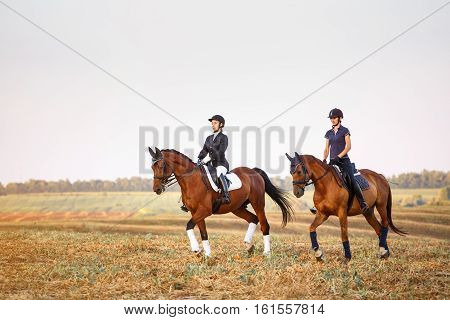 two girls ride horses on the field. equitation.