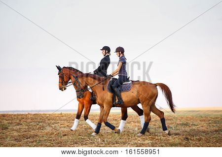 two womans ride horses on the field. equitation.