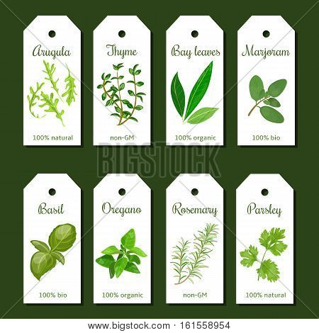 Cooking herbs tags. Cute label set. Culinary herbs. Bunch of cooking seasonings. For cooking, cosmetics, organic market, farm products, health care products. Can be used as logo, price tag, label