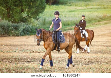 Young womans riding on a horse. Equestrian sportswoman jockey