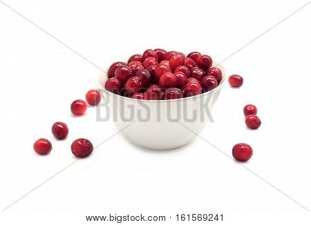 Cranberries in round white bowl and scattered berries isolated on white background indoor front view close up
