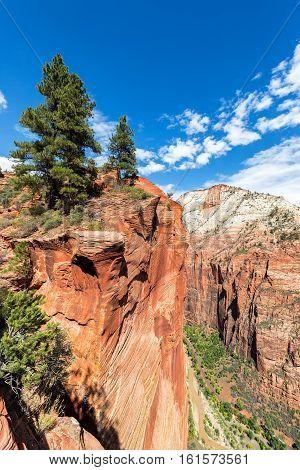 Zion Canyon Landscape
