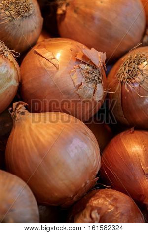 Closeup of the pile of raw and unpeeled onion