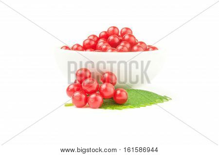 Red berries cluster of guelder rose  isolated on a white background cutout