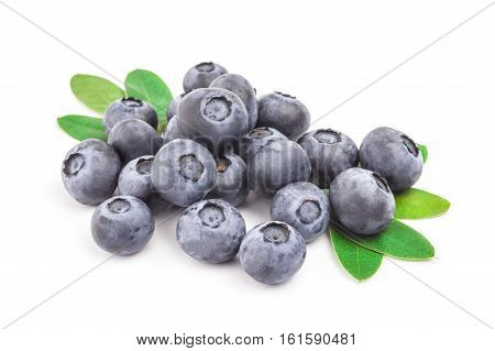 Bog bilberry isolated on a white background cutout