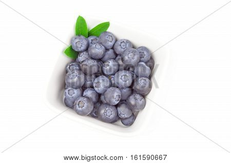 Great bilberry isolated on a white background cutout