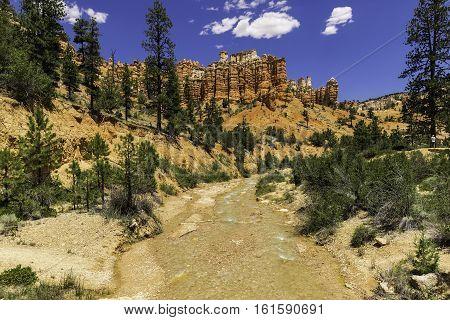 Red Canyon Creek in Utah with red rock hoodoos