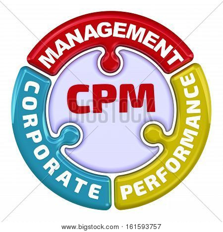CPM. Corporate performance management. The check mark in the form of a puzzle. The inscription