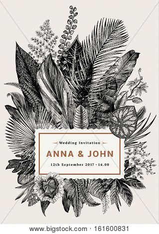 Vector vintage card. Wedding invitation. Botanical illustration. Tropical leaves. Black and white.