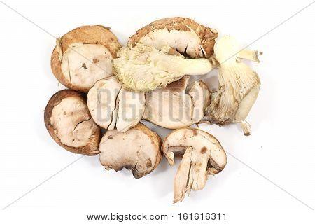 Row Of Sliced Organic Crimini Or Baby Bella Mushrooms