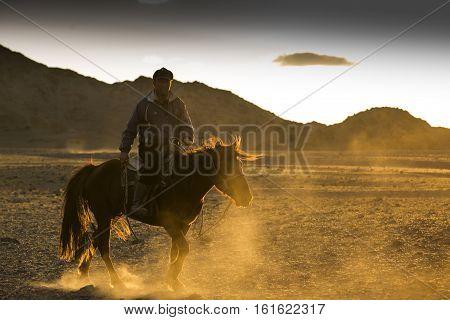Bayan Ulgii Mongolia October 2nd 2015: rider his on his prazewalski horse