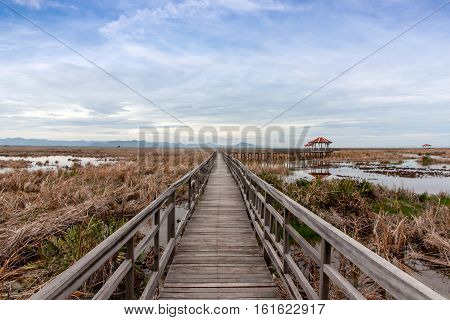 wooden bridge stretches across the dry grasslands and the flooding at Khao Sam Roi Yot National Park Thailand