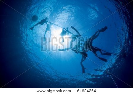 Free divers on the ocean's surface preparing to descend to the depth