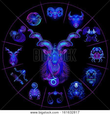 Set Neon Zodiac Signs. Capricorn. Vector design element isolated on background.