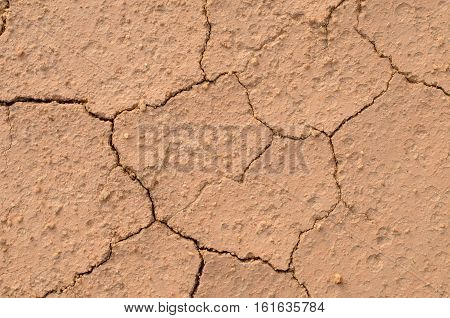 Close Up Dry Crack Soil Texture Background.