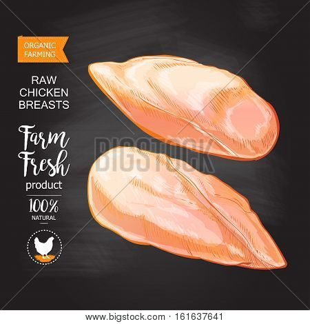Fresh chicken breast. Top view. Isolated on a white vintage vector isolated sketch hand drown chalk drawing on the blackboard