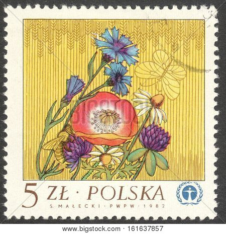 MOSCOW RUSSIA - CIRCA NOVEMBER 2016: a post stamp printed in POLAND shows flowers circa 1982