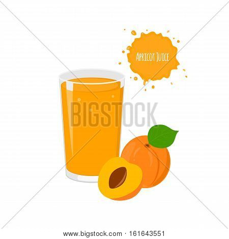 Vector apricot juice with yummy apricot and juicy slices for package design and labels. Design elements. Exotic fruits. Fruit juice.