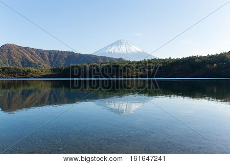 Mt Fuji with reflection on Saiko Lake