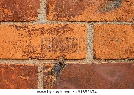 Red Brick Wall as a background pattern