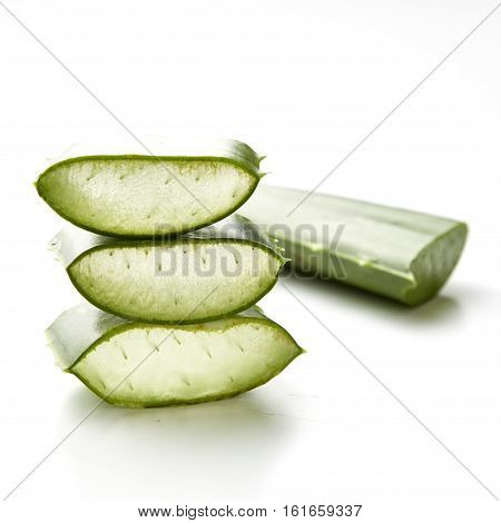 plant Fresh cut Aloe Vera slices solated