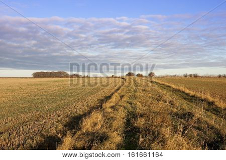 Bridleway And Golden Straw Stubble