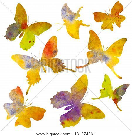Butterfly silhouette. Watercolor illustration. Isolated on white background. For postcards, decoration