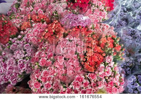 Beautiful carnation for sell in Pak Khlong Talat Bangkok's largest flower market