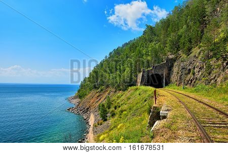 Tunnel Of Railway And Forest Above It