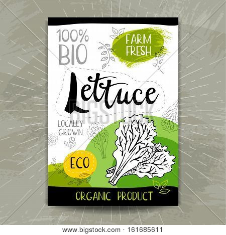 Set of colorful stickers in sketch style, food, spices, white background. Lettuce. Vegetables, farm fresh, locally grown. Hand drawn vector illustration.