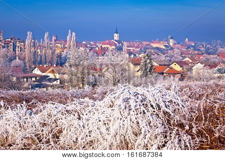 Ice Frost Winter View Of Krizevci