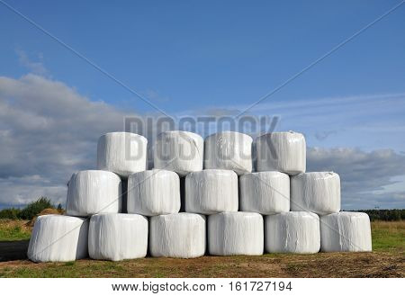 Bales of hay wrapped in plastic wrap.
