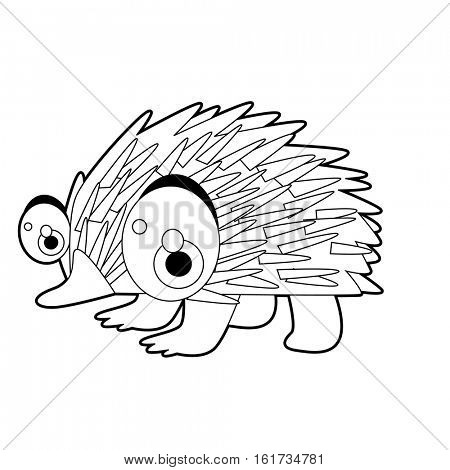 coloring pattern page. Funny cute cartoon Australian animals. Echidna