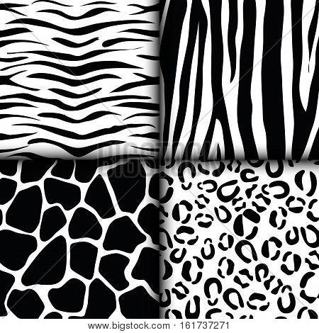 assorted animal print tiger giraffe zebra leopard pattern image vector illustration design