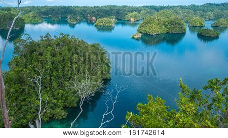 Many Islands covered by Palm trees in Passage between Gam and Waigeo, View Point near Warikaf Homestay. West Papuan, Raja Ampat, Indonesia.