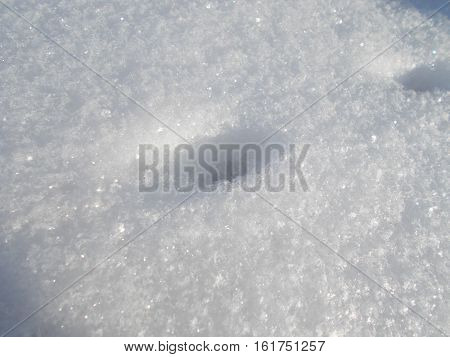 Cute little footprint of the little beast in the snow.Snow texture.Real shining snow.