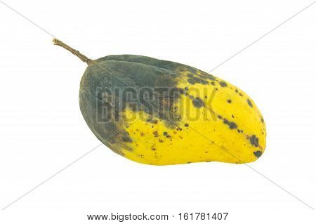 Yellow rotten mangoes isolated on white background