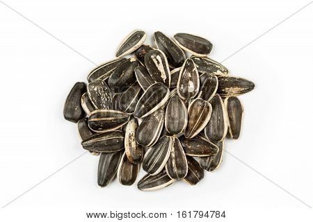 Unsalted Raw Sunflower Seeds Isolated On White Background