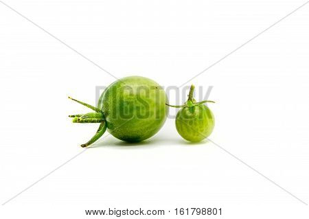 Two Homegrown Cherry Tomatoes  Isolated On White