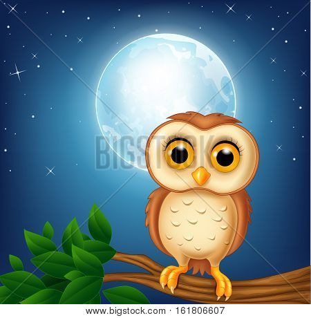Vector illustration of Cartoon owl on the tree branch