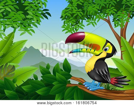 Vector illustration of Cartoon toucan on a tree branch