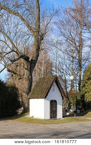 small white chappel under the bare tree at the cemetery