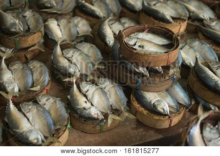 Thailand Bangkok Thewet Fisch Market
