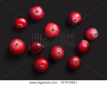 Wild Cranberries, Top View,  Paths