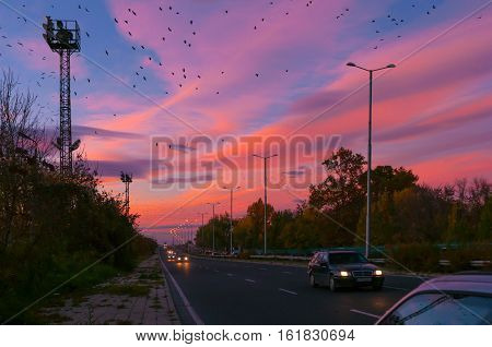 road and cars on the background of sunset and birds in the sky