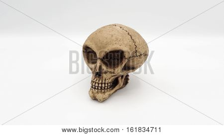 Yellow alien skull head and white background.
