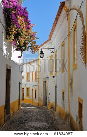 EVORA, PORTUGAL: A narrow cobbled street inside old town with colorful bougainvilleas