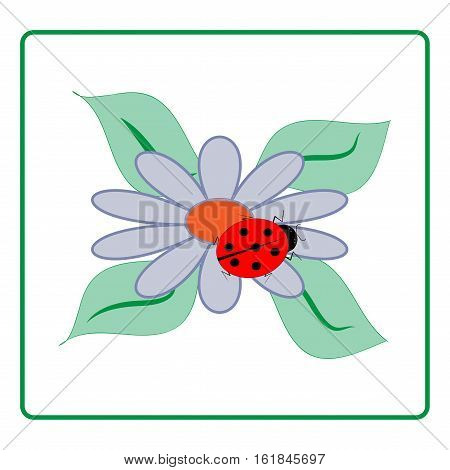 Ladybird and flower in green frame. Isolated ladybug on chamomile colorful sign red insect symbol spring summer garden. Template for t shirt apparel card poster. Design element Vector illustration